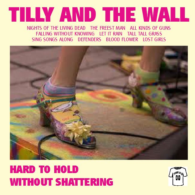 An Imaginary Compilation Album 22 Tilly And The Wall