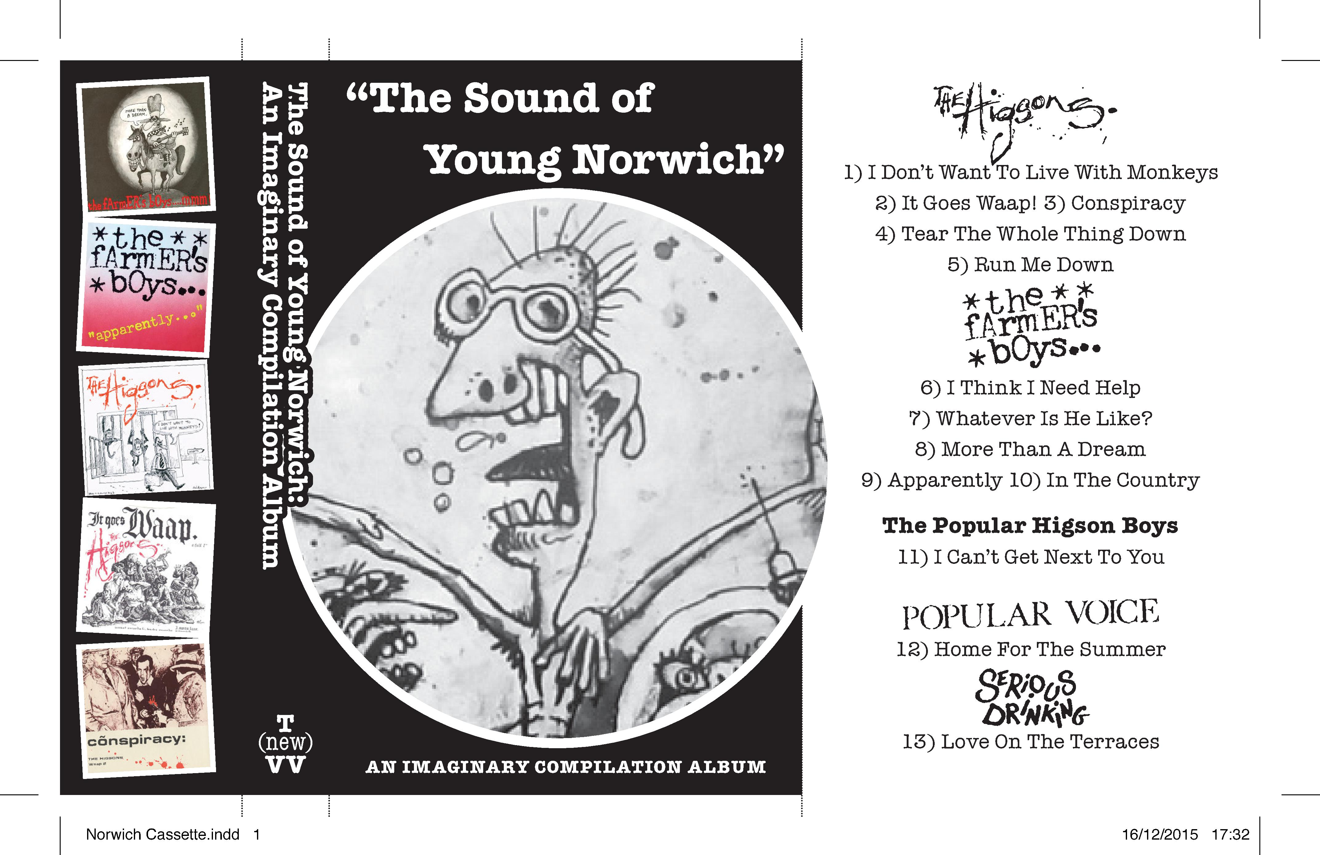 LAURA@NUBILES  45 AN IMAGINARY COMPILATION ALBUM : #55 : THE SOUND OF YOUNG NORWICH | the (new) vinyl villain