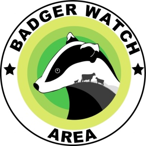 dbbw-badger-watch
